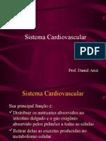 Biologia PPT - Sistema Cardiovascular