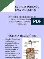 Biologia PPT - Sistema Digestivo I