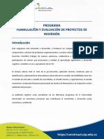 5b3fc64415822.Programa Formulacion y Evaluacion de Proyectos