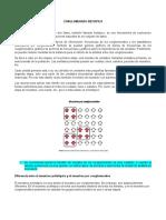 Resumen CONGLOMERADO BIETAPICO.docx