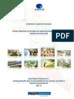 258_CAERN2_R1_Estudos_e_Projetos_Existentes.pdf