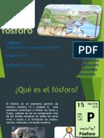 Ciclo del fósforo.pptx