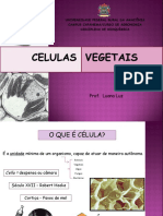 Aula de célula vegetais
