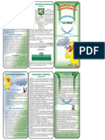 Folleto manual de convivencia los patos.docx