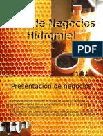 Plan de Negocios FINAL.pptx