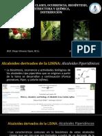6. ALCALOIDES 1.pdf