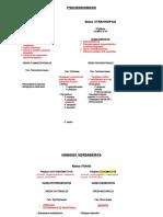 Mapas-conceptuales-fitopato.docx