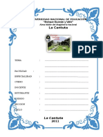 76605202-CARATULAS-PRIALE.doc