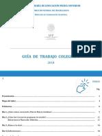 guía_2018.pdf