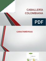Caballería Colombiana