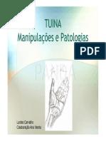 workshop-tuina-apresentacao-final2272_2188.PDF