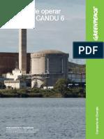 Riesgos de Operar Reactores CANDU