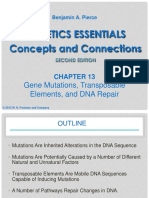283973_Lecture 12. Mutation.pdf