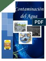 INFORME_DE_AMBIENTAL_CONTAMINACION_DEL_A.docx