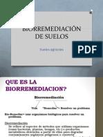BIORREMEDIACIÓN DE SUELOS.pdf