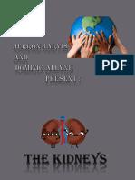Kidney presentation.pptx