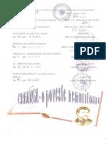0_1_proiect_interjudetean_2013_creanga.docx