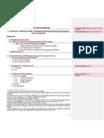Esquema gral tesina (comentarios).docx