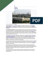 Petroquímica.docx