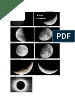 Fases de la luna.docx