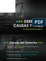 Causas y Fines del Derecho.ppt