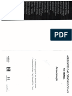 Antropologia da Administração e da Governança no Brasil