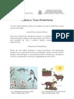 Biologia - CASD - Cadeias e Teias Alimentares
