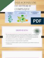 DIAPOS-DE-SISTEMAS-COMPLEJOS (1)