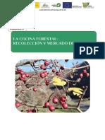 AULA Unidad 6 Bosques Guadalajara Castilla La Mancha