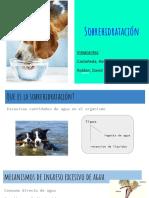 Sobrehidratación-Grupo  02.pdf