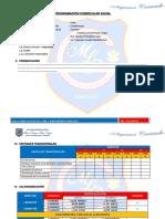 FORMATO PROGRAMACION ANUAL.docx