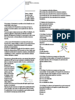 TALLER fotosintesis.docx