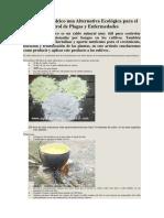 Caldo Sulfocalcico una Alternativa Ecológica para el Control de Plagas y Enfermedades.docx