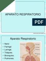 APARATO RESPIRATORIOo.pdf