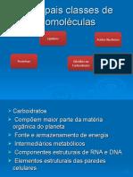 Biomoléculas 2010
