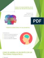 La Terapia Ocupacional en Salud Mental
