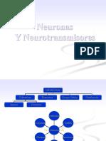 Neuronas y Neurotransmisores.pdf
