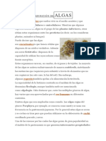 DEFINICIÓN DEALGAS.docx