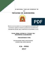 CARATULA e INDICE.doc