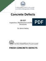 Concrete Defects 2