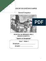 apsotila modulo II catequese.pdf