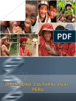 1 Diversidad Cultural