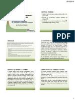 Tema II Fundamentos y Desarrollo de Los Sistemas Erp