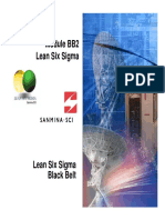 02 - Lean Six Sigma.pdf