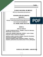REPORTE-AGUA-RECREACIONALES (1).docx