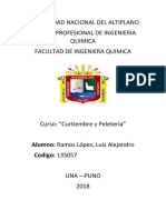 Andrew PELETERIA 2018.docx