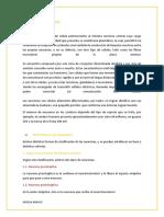 BIOLOGIA NEURONAS.docx