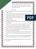 programa Santa Rosa de Lima.docx