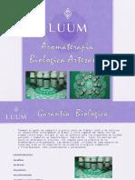 ACEITES DE VERANO  LUUM.pdf