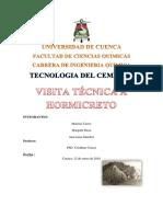 Visita hormicreto.docx